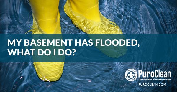 Flooded Basement - Springfield MO