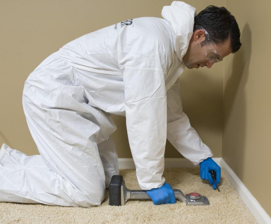 Mold Removal - Mold and Multi-Family Dwellings - Mold in House Springfield MO