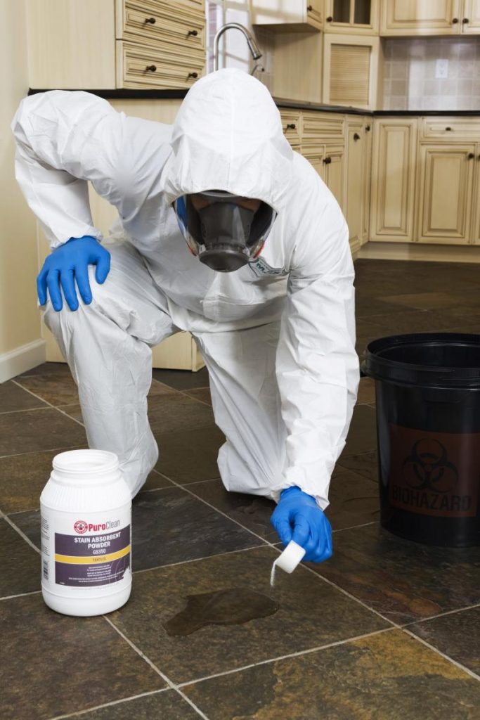 The Use Of Antimicrobials In Cleaning Up Mold