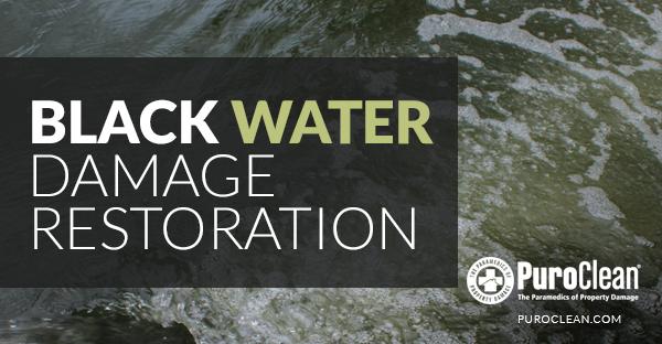 Black Water Damage - Water Restoration Springfield MO