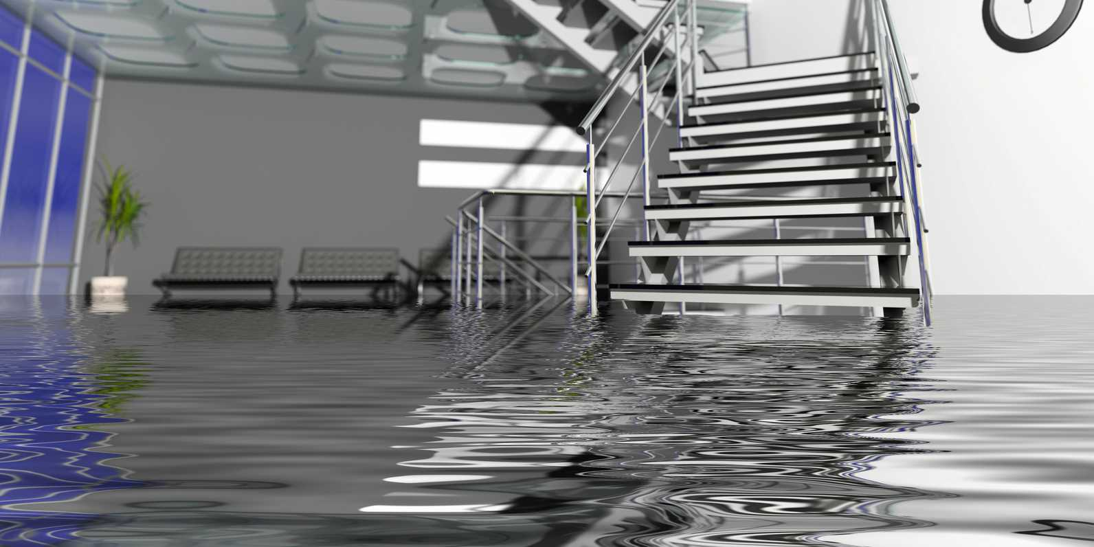 The most common disasters sewage backup cleanup for Sewer backup smell in house