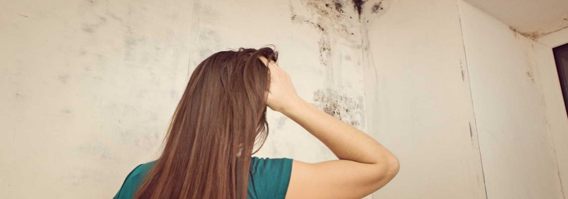 How to Spot Mold in Your Home - Mildew Removal Springfield MO
