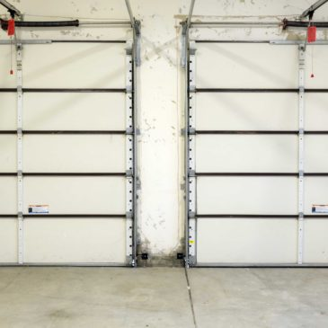 Prevent Mold Growth in Your Garage – Mold Cleanup Springfield MO