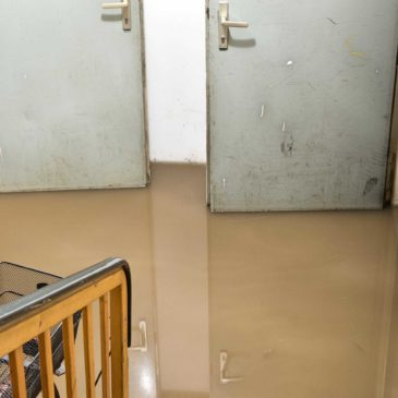 Sump Pump Maintenance Mistakes – Flooded Basement Springfield MO