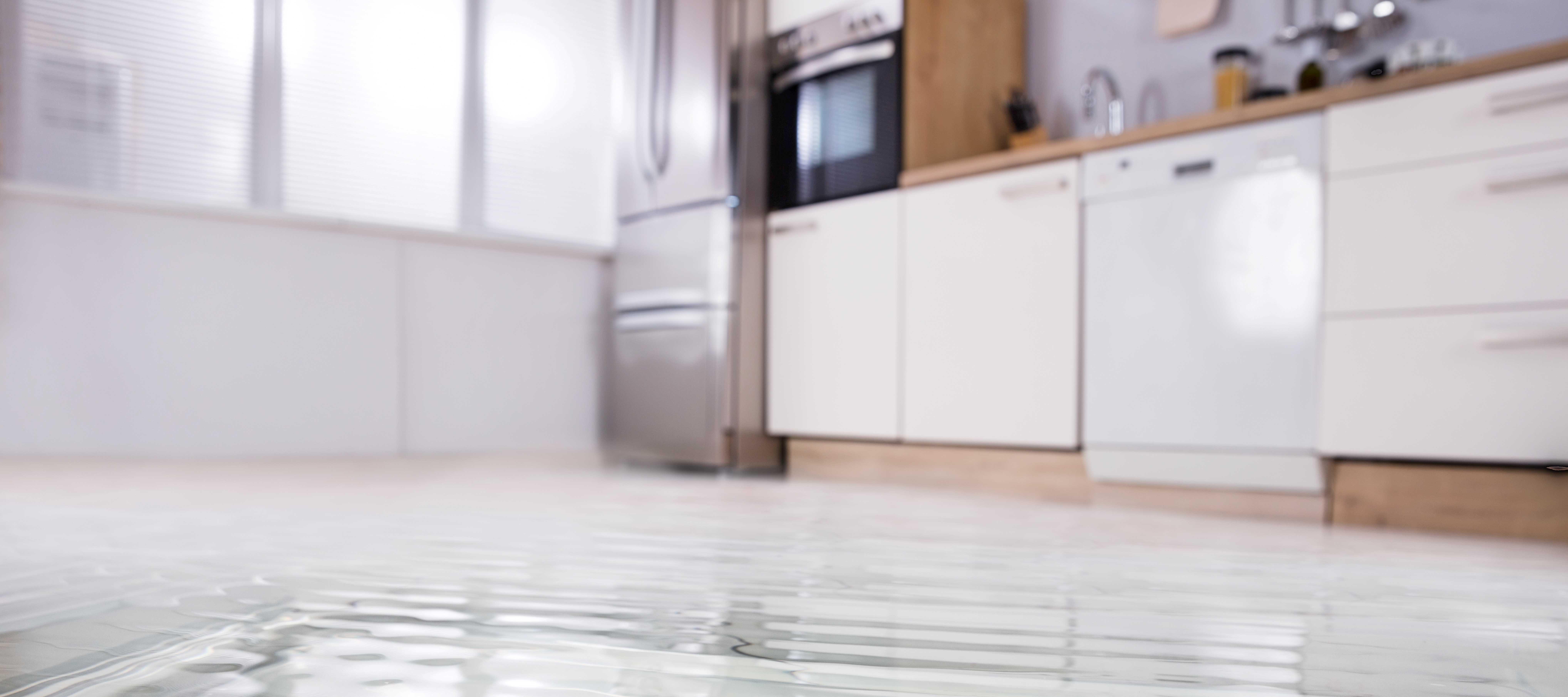 Tips for Flood Restoration in Springfield Missouri