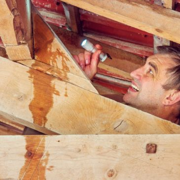 How to Prevent Attic Water Damage in Springfield Missouri